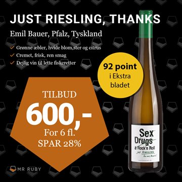 6 flasker 2019 Just Riesling for me thanks, Emil Bauer, Pfalz, Tyskland
